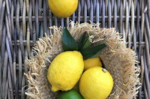 Les bienfaits du régime citron